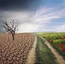 Vélemények és javaslatok az I. Éghajlatváltozási Cselekvési Tervről