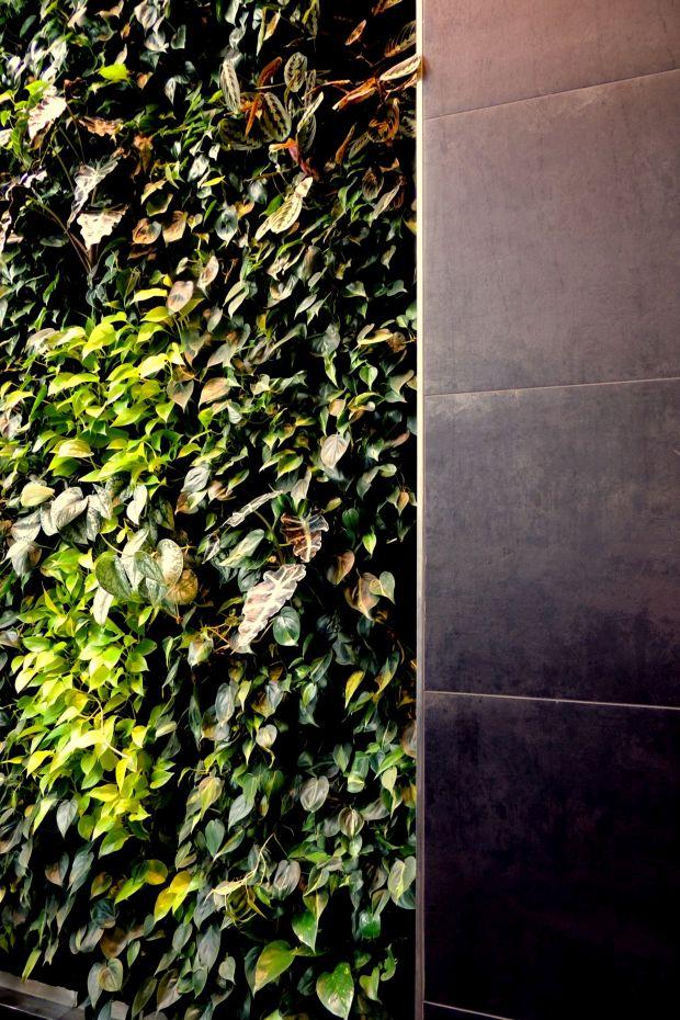 Greenwalkphoto rövidlista: Szigeti Kata // Green House