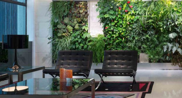 Green Offices That Keep Staff Healthy And Happy Are Improving